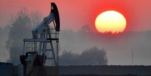 OPEC: Küresel petrol talebi 2021'de günlük 5,9 milyon varil artacak