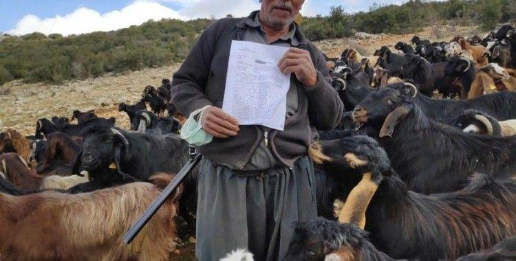 Elinde tüfekle kaybolan koyununu arayan çobana 974 TL ceza kesildi