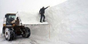 Muş'ta 'kar kaplanları' yolları açmak için metrelerce karla mücadele ediyor