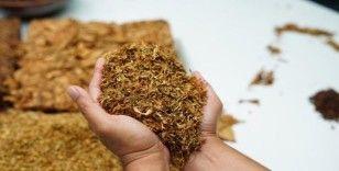 Ağrı'da 130 kilo ambalajlı, 450 kilo da açık tütün ele geçirildi