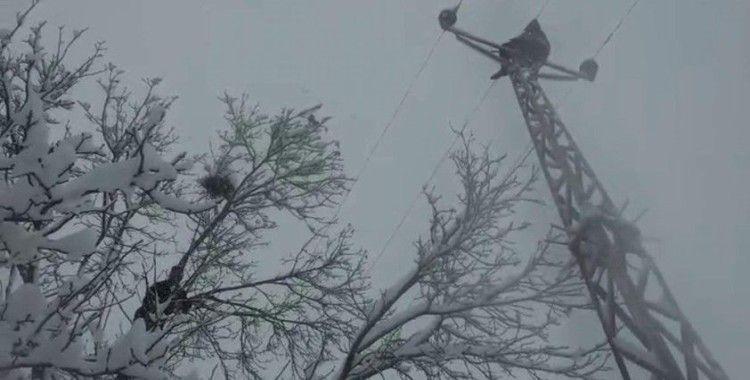 Elektrik direğinde ölümle dans