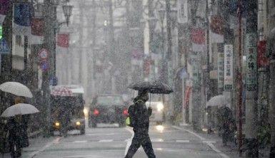 Japonya'da bir eyalette daha mutasyon virüs endişesi