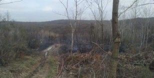 Beykoz'da havaya açılan ateş ormanlık alanı yaktı