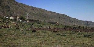 Esed rejimi, İdlib ve Hama'da yerinden ettiği çiftçilere ait en az 440 bin dönümlük araziye el koydu