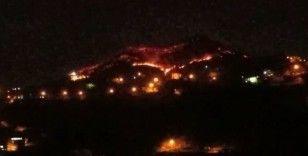 Trabzon'un Of ilçesinde örtü yangını