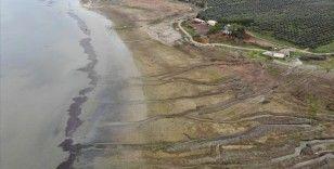 20 bin kuşa ev sahipliği yapan Marmara Gölü yağışa hasret