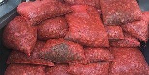 Edirne'de Yunanistan'a götürülmek üzere canlı 1 ton kaçak midye ele geçirildi
