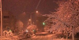 Sarıyer'de aşırı kar yağışı nedeniyle savrulan ağaç yola devrildi