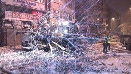 Kağıthane'de yoğun kar yağışı nedeniyle yol kenarındaki ağaç devrildi