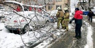 İstanbul'da kar yağışı ve fırtınada 517 ağaç ve direk devrildi