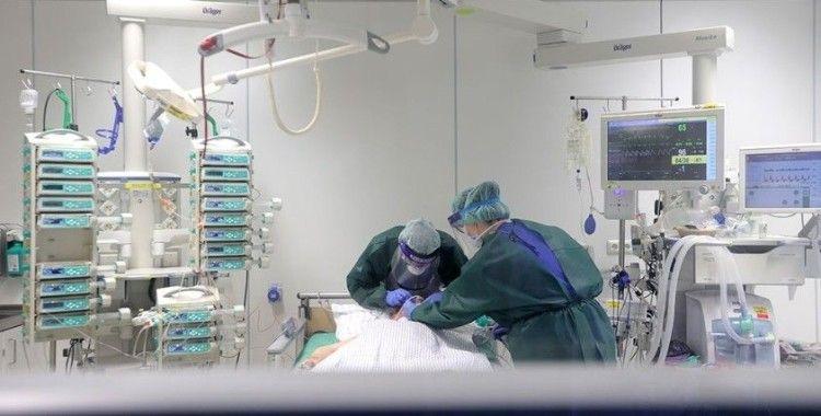 Almanya'da son 24 saatte koronavirüsten 560 ölüm