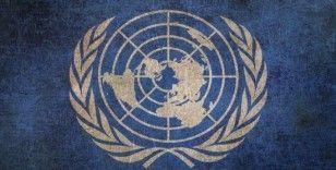 BM'den 'IŞİD tekrar güçlenebilir' uyarısı