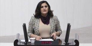 HDP Milletvekili Dirayet Dilan Taşdemir hakkında 'silahlı terör örgütü üyesi olmak' suçundan soruşturma başlatıldı