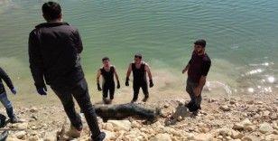Dicle Nehrinde erkek ceset bulundu