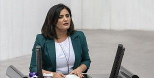 Teslim olan teröristler ifadelerinde HDP Milletvekili Taşdemir'in Gara'ya gittiğini anlattı