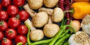 Organik Pazar vatandaşları sağlıklı ürünlerle buluşturuyor