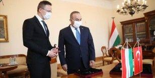 Çavuşoğlu, Macaristan'da yakalanan 412 tarihi eseri Türkiye'ye getirmek üzere teslim aldı