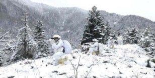 Mehmetçik zorlu kış şartlarında Teröristle Mücadele Harekatına devam ediyor