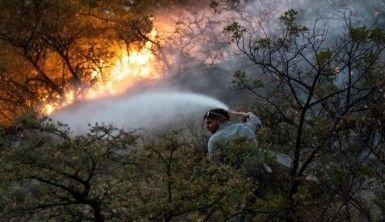 Meksika'da korkutan orman yangını, 400 kişi tahliye edildi