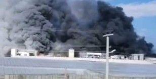 Mersin'de muz sarartma tesisinde yangın