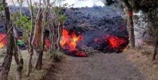 Pacaya Yanardağı'nın püskürttüğü lavlar yerleşim yerlerine ulaştı