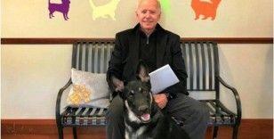 Biden'ın köpeği, bir çalışanı ısırdı