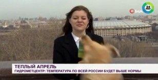 Rus muhabir mikrofonunu canlı yayında köpeğe kaptırdı