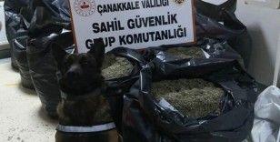 Edirne'de 260 kilo damiana otu ele geçirildi