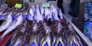 Balık av sezonunda sona doğru