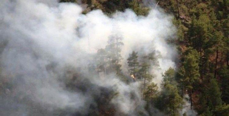 Muğla'da iki farklı noktada orman yangını çıktı