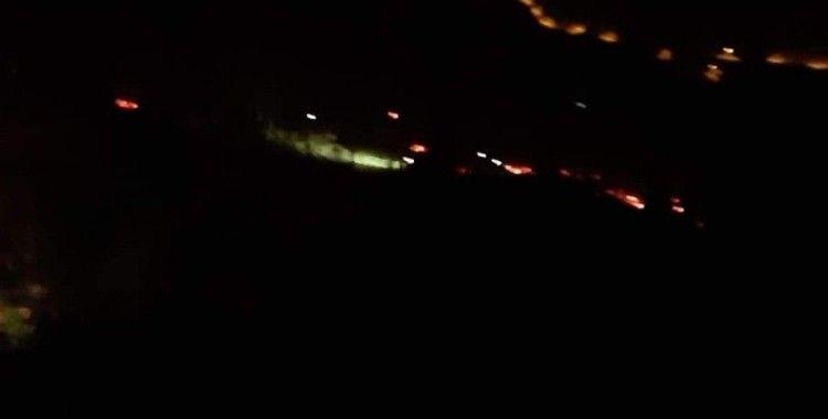 İzmir'de orman yangını: 500 kestane ve meşe ağacı yandı