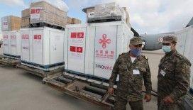 Sinovac, dünya genelinde 260 milyon doz aşı tedarik etti