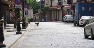 Tam kapanmanın ilk gününde Diyarbakır hayalet kente dönüştü