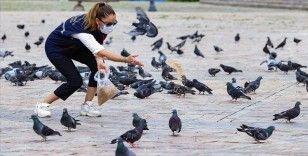 İzmir'de salgın sürecinde sokak hayvanlarına yaklaşık 110 ton mama bırakıldı