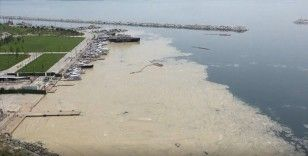 Anadolu Yakası'nda deniz yüzeyinde oluşan beyaz tabaka kıyıya da vurdu