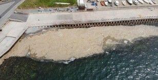 Caddebostan Sahili'nde deniz salyası tedirginliği artarak devam ediyor