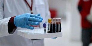 DSÖ: 'Son 2 haftadaki vaka sayısı pandeminin ilk 6 ayından daha fazla'