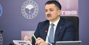 """Tarım ve Orman Bakanı Pakdemirli: """"Son 19 yılda, 5,3 milyar fidanı toprakla buluşturduk"""""""