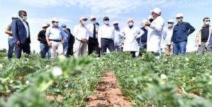 Vali Karaloğlu'ndan tarım kurumlarına ziyaret