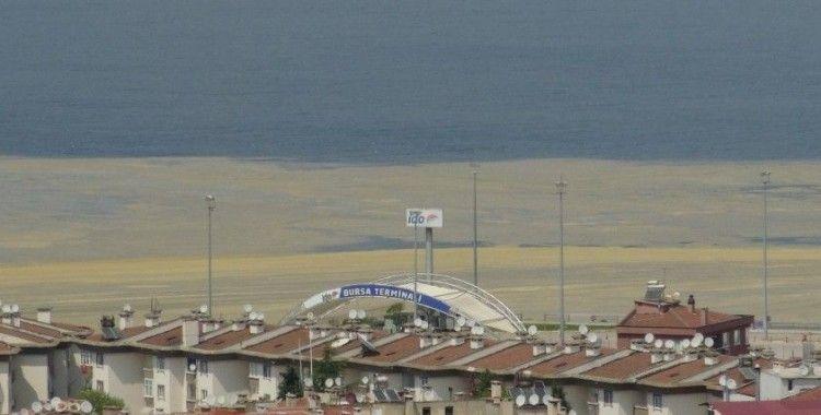 Mudanya Sahilleri de deniz salyası ile kaplandı