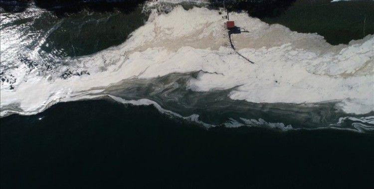 Tekirdağ'da deniz yüzeyinde oluşan beyaz tabaka kıyıya da vurdu