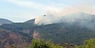 Ortaca'da orman yangınında 1 hektar yandı
