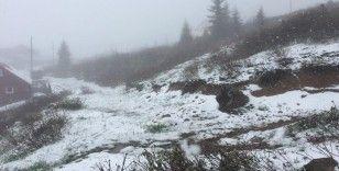 Doğu Karadeniz'de Mayıs'ta yaylalarda kar süprizi