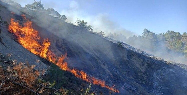 Burdur'da orman yangını