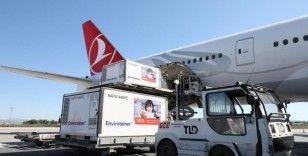 Coronavac aşısı, birkaç haftalık aradan sonra tekrar Türkiye'ye ulaştı