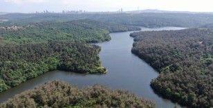 Elmalı Barajı'nda doluluk oranı rekor seviyede