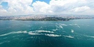 'Sınır ötesi durum da Marmara ekosistemini etkiliyor'