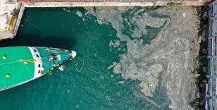 Prof. Dr. Sarı: Marmara Denizi için müsilaj erken uyarı sistemi kurmamız lazım