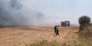 Kanepe hurdasını almak içi ormanı yakıyordu, 155 bin TL para cezasına çarptılırdı