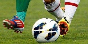 UEFA, EURO 2020'de VAR'a güveniyor
